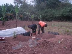 farmersfamiliesfutureuganda06226